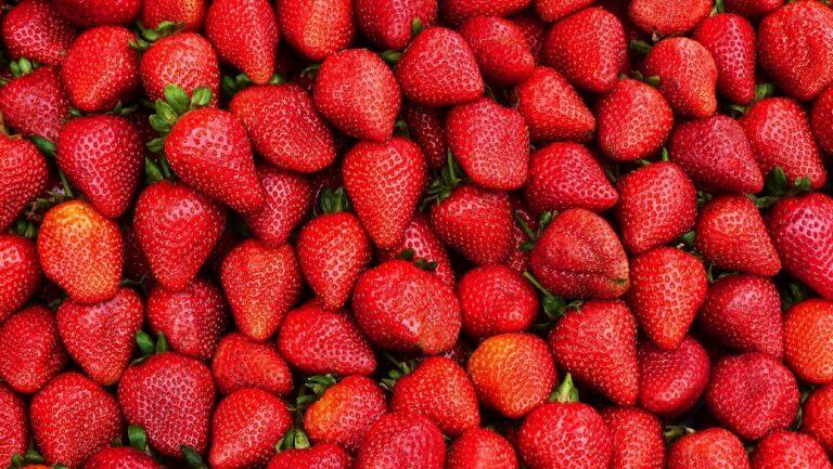 Королівська ягода